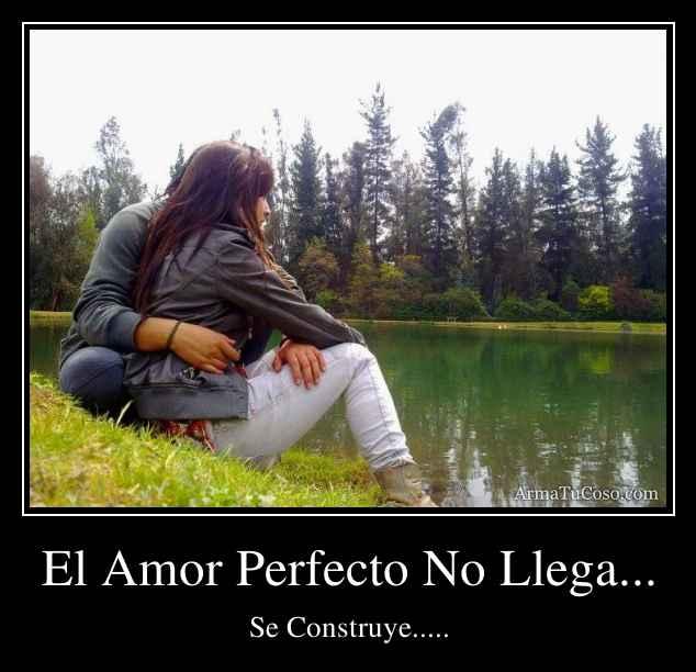 armatucoso-el-amor-perfecto-no-llega--732904.jpg