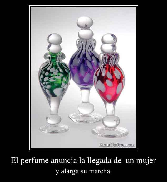 armatucoso-el-perfume-anuncia-la-llegada-de-un-mujer-381.jpg
