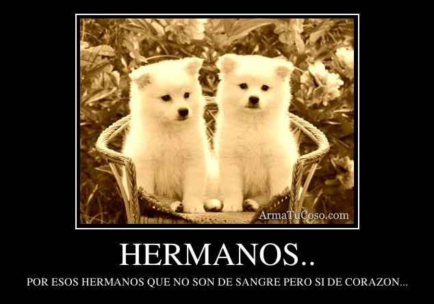 armatucoso-hermanos--750153.jpg