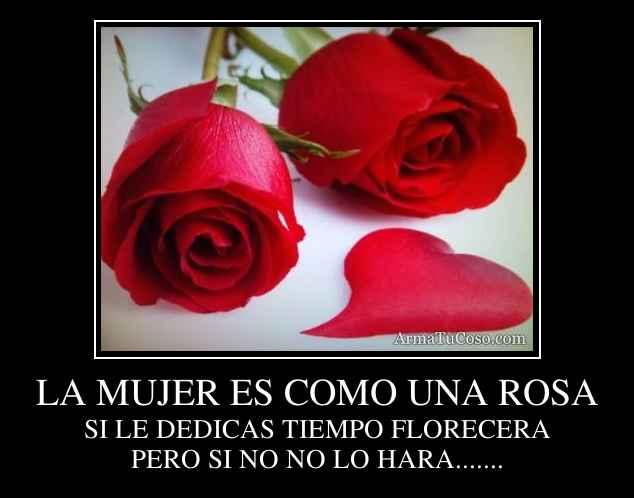La mujer es como una rosa - Como secar una rosa ...