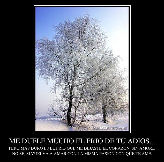 El Frio De Tu Adios MP3 Download - mp3cool2xyz