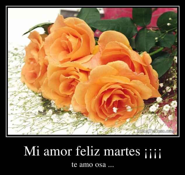 Mi amor feliz martes