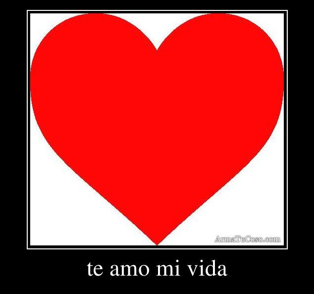 Te amo mi vida - Spanish - English Translation and Examples
